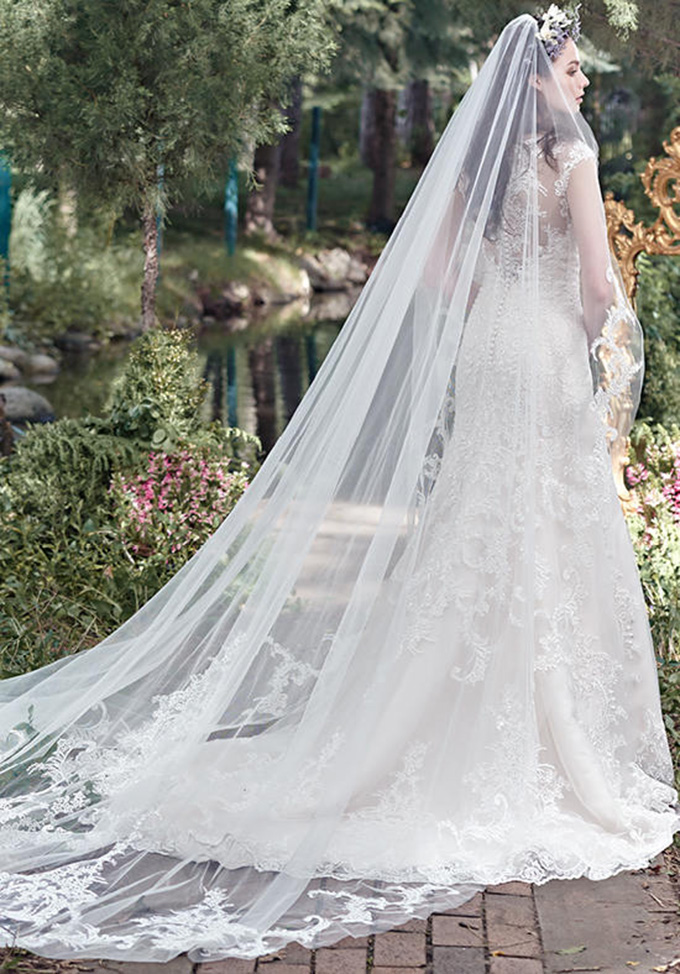 Lace Wedding Dress And Veil : Your guide for choosing best wedding dress veil what