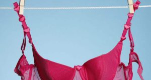bra-on-clothesline